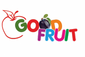 GOOD FRUIT - export of fresh fruit, vegetables and pasta.